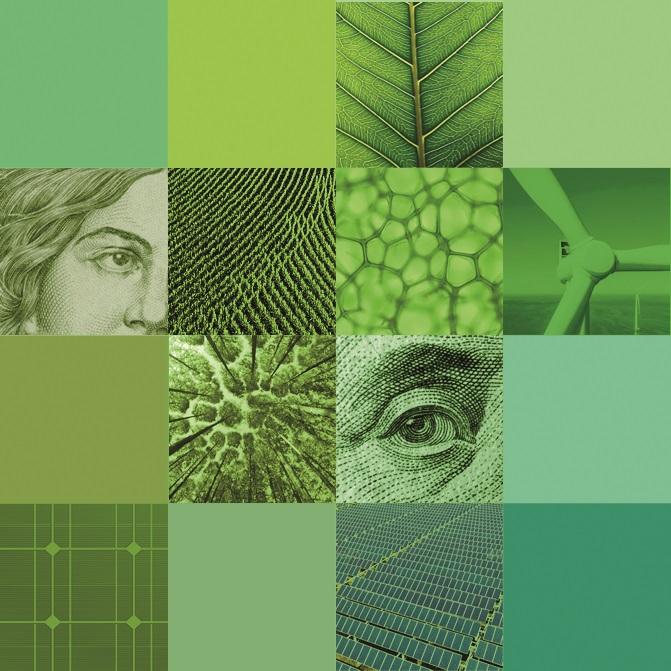 Hledání odstínů zelené