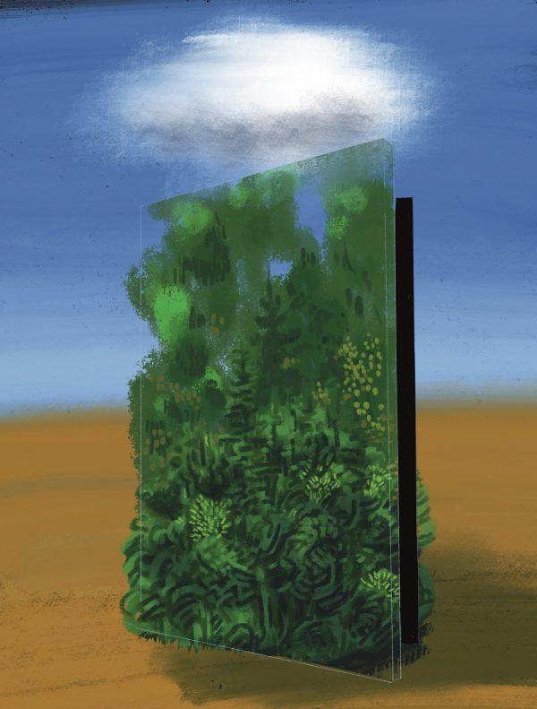 Les je klíč ke změně klimatu