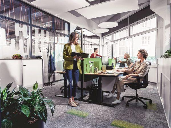 Kanceláře na míru